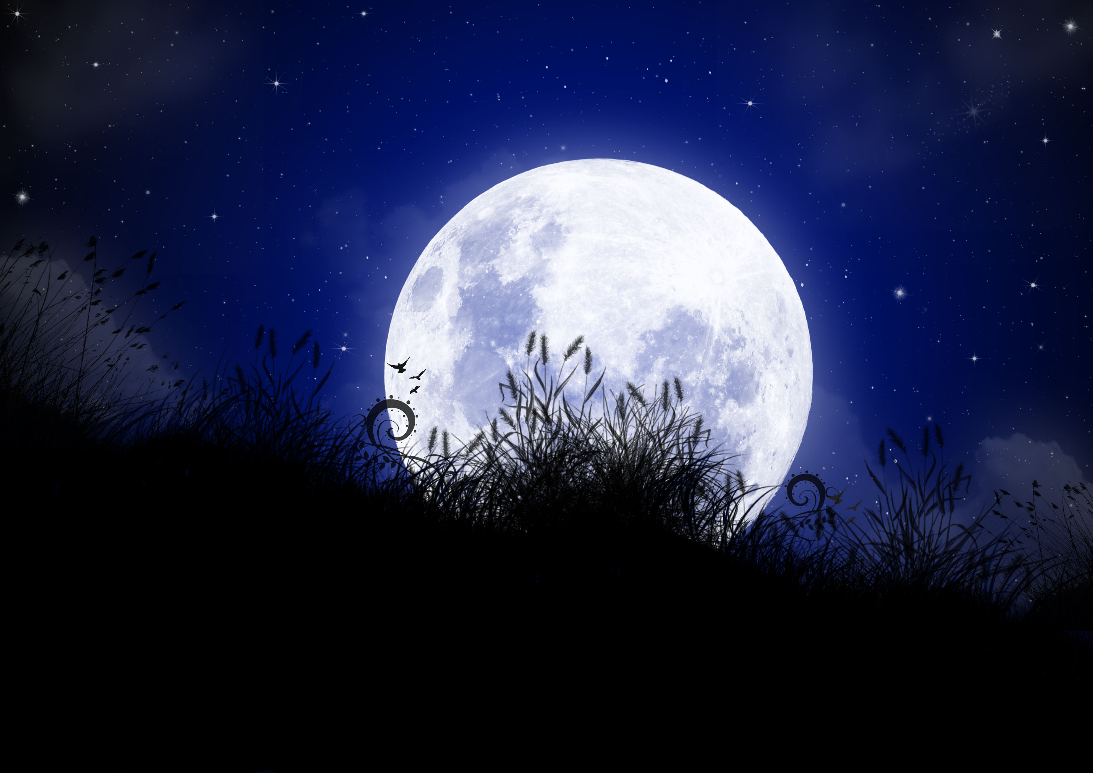 Some of the most beautiful poetic lines about the moon – which we ...